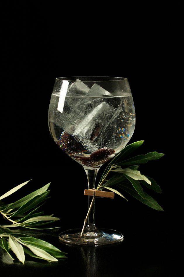 cata gin tonic madrid